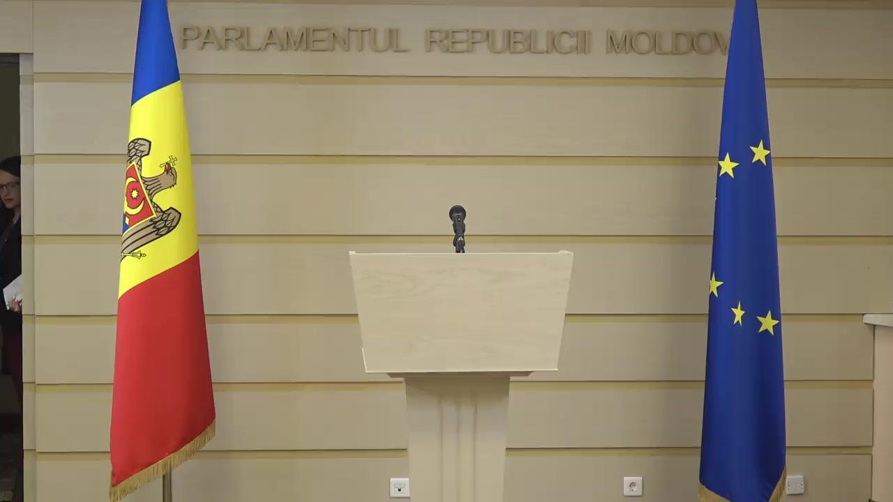 Declarații de presă susținute de către Delegația Comisiei pentru afaceri externe a Parlamentului European