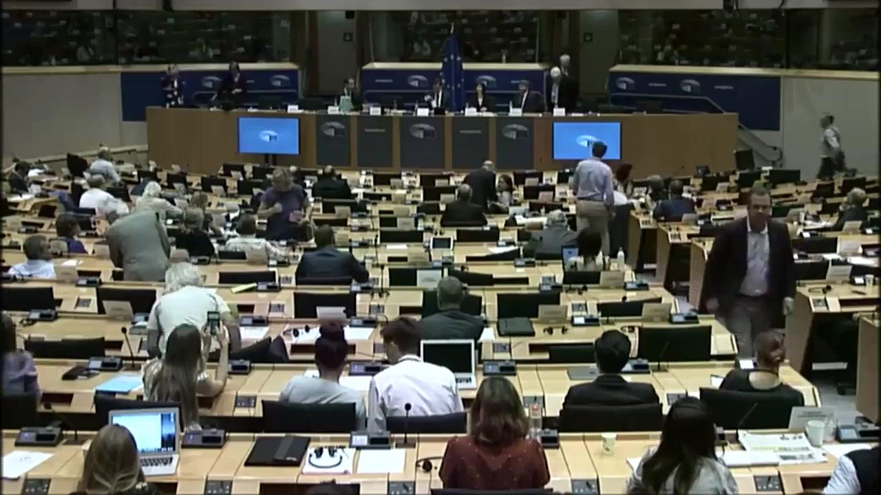 Ședința Comisiei pentru afaceri externe (AFET) din Parlamentul European