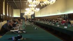 Ședința Guvernului României din 12 iunie 2013 (imagini protocolare)