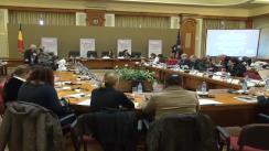 Conferință de presă susținută de deputatul PSD, Ana Birchall, privind violența față de femei
