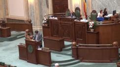 Ședința în plen a Senatului României din 11 iunie 2014