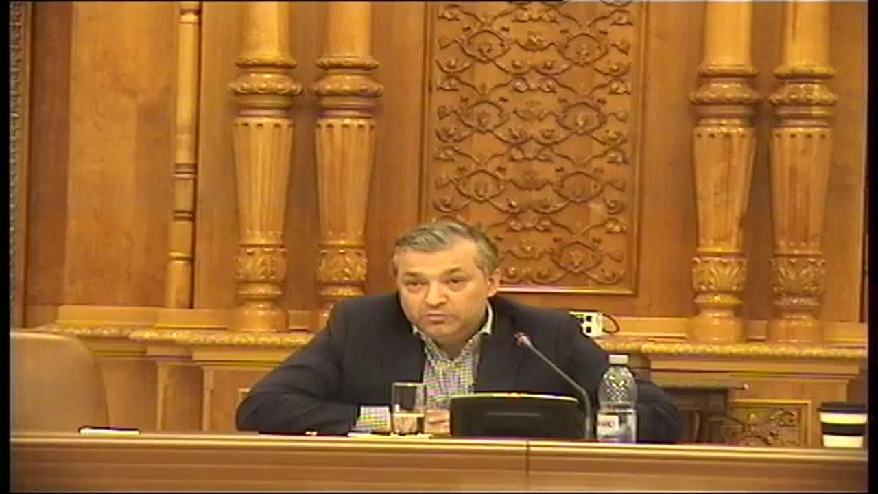 Ședința Comisiei speciale de anchetă a Senatului și Camerei Deputaților pentru verificarea aspectelor ce țin de organizarea alegerilor din 2009 și de rezultatul scrutinului prezidențial