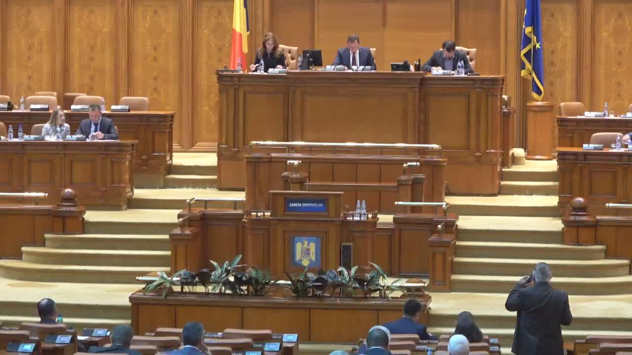 Ședința în plen a Camerei Deputaților României din 29 mai 2017