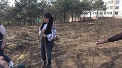 """Primarul general interimar al municipiului Chișinău, Silvia Radu, participă la o acțiune de plantare a 150 de copaci în Parcul """"Valea Farmecelor"""""""