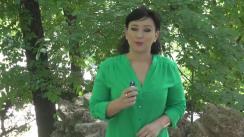 Declarații de presă susținută de Partidul Ecologist Român