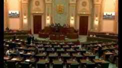 Ședința în plen a Senatului României din 10 iulie 2018