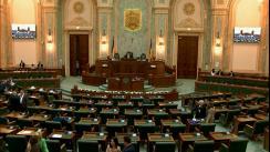 Ședința în plen a Senatului României din 25 martie 2019