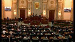 Ședința în plen a Senatului României din 17 aprilie 2019