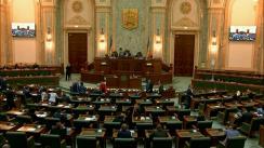 Ședința în plen a Senatului României din 7 mai 2019