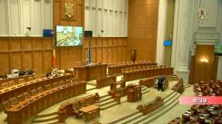 Ședința în plen a Camerei Deputaților României din 29 mai 2019
