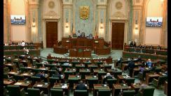 Ședința în plen a Senatului României din 28 mai 2019
