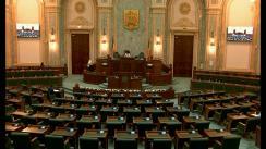Ședința în plen a Senatului României din 19 iunie 2019