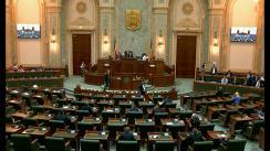 Ședința în plen a Senatului României din 24 iunie 2019