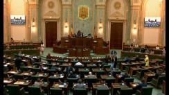 Ședința în plen a Senatului României din 3 iulie 2019