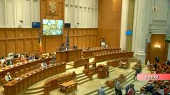 Ședința în plen a Camerei Deputaților României din 1 iulie 2019