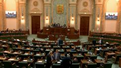 Ședința în plen a Senatului României din 22 octombrie 2019