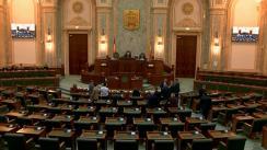 Ședința în plen a Senatului României din 13 ianuarie 2020