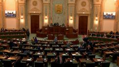 Ședința în plen a Senatului României din 10 februarie 2020