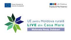 """Eveniment online """"LIVE din Casa Mare"""" în localitatea Molovata Nouă, Dubăsari: Suportul UE pe ambele maluri ale Nistrului"""