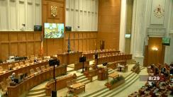 Ședința în plen a Camerei Deputaților României din 17 februarie 2021