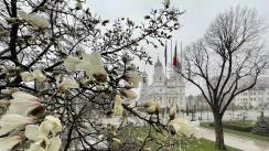 Ședința extraordinară a Consiliului Local al Municipiului Iași din 07 aprilie 2021