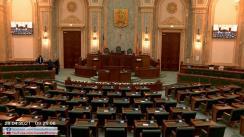 Ședința în plen a Senatului României din 28 aprilie 2021