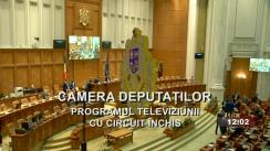 Ședința în plen a Camerei Deputaților României din 11 mai 2021