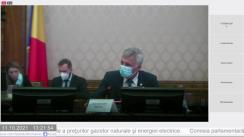 Comisia parlamentară de anchetă pentru stabilirea cauzelor creșterii substanțiale a prețurilor gazelor naturale și energiei electrice